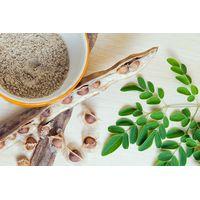 Moringa Dried Seeds thumbnail image