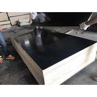 GW Black Plywood
