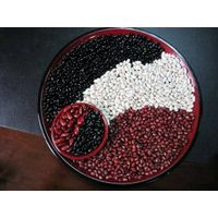 New Crop White Kidney Beans/Red beans/Black beans/Haricot thumbnail image