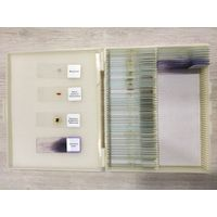 Biological Microscope Slides thumbnail image