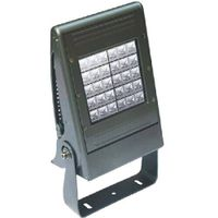 LED Flood Light thumbnail image