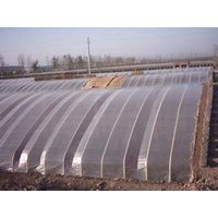Greenhouse film with variable transpancy thumbnail image