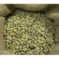 Raw Arabica coffee beans thumbnail image