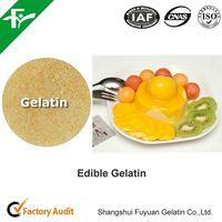 bovine skin gelatin/food grade gelatin 220BL