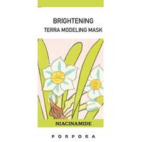 Terra Powder Modeling Mask thumbnail image
