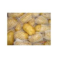Fresh Potato with high quality thumbnail image