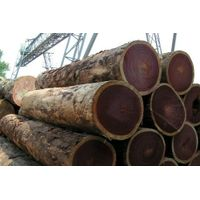 AFRICAN ROUND LOGS TIMBER WOODS FOR SALE