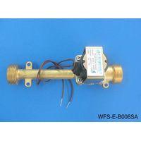 Full copper high temperature solenoid valve WFS-E-B006SA