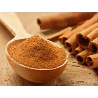 CINNAMON WITH BEST PRICE - HIGH QUALITY