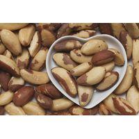Brazil Nuts thumbnail image