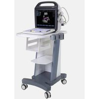 C5 portable color ultrasound system