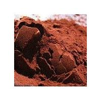 Factory supply best price cocoa powder