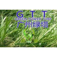 Thilon artificial turf grass football thumbnail image
