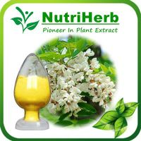 Natural Extract 98% Quercetin