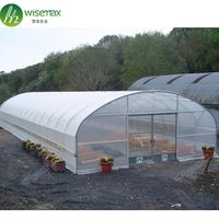 Top Quality China Single Span Polyethylene Film Greenhouse Manufacturer