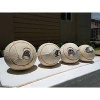 polished    coconut