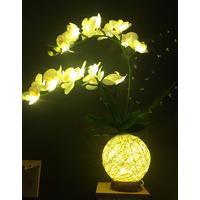 butterfly flower light thumbnail image