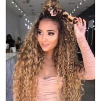 High Quality Cuticle Aligned Full Lace Wigs Human Hair 100% Curly Full Lace Wigs thumbnail image