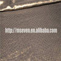 Transparent Thin Fabric for Garment