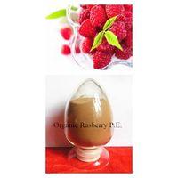 Organic Raspberry Extract