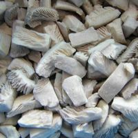 Frozen oyster mushroom  pleurotes thumbnail image
