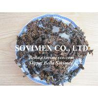 Dried Sargassum seaweed thumbnail image
