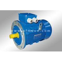 IE1 Standard Efficiency Three Phase Induction Motors