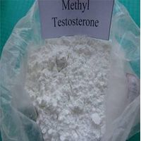 Methyl Testosterone for Steroid hormone thumbnail image