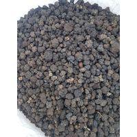Morinda Citrifolia Suppliers India thumbnail image
