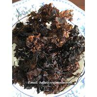 dried sargassum seaweed in Viet Nam (skype: fiona sovimex)