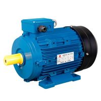 OEM Cast Iron/Aluminum Housing Three Phase/Single Phase Electric Motor