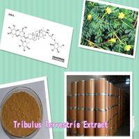TribulusterrestrisExtract