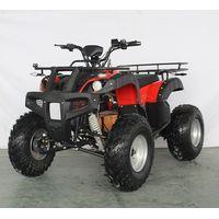 GW 2000W Electric ATV