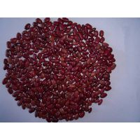 small red kidney bean thumbnail image
