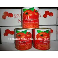170g canned tomato paste