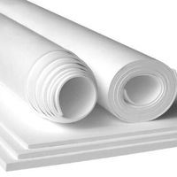 Expanded PTFE sheet