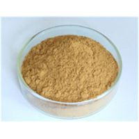 Astragalus Root Extract thumbnail image