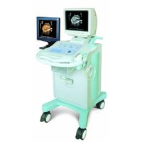 Double Screen Cart Type Ultrasound