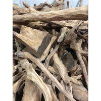 Fiji Sandalwood for Sale thumbnail image
