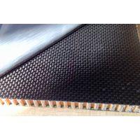 Nomex Honeycomb Sandwich panel