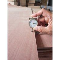 2.4mm Natural Sapele faced door size plywood thumbnail image