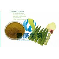 Competitive Price Sex Medicine No Side Effect Dried Okra Powder