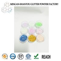 shining pet rainbow fluorescent glitter powder for sport shoes