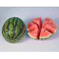 Chinese fresh fruit watermelon supplier and exporter