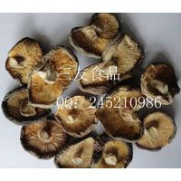 Abnormal Dried Mushroom Grow In Autumn