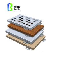 Solid Aluminum Panel Manufacturer From China Big Project Construction Wall Cladding