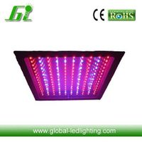 (Hydroponics)150W LED Grow Light with CE&RoHs