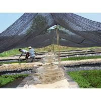 shade netting ,shade cloth for agriculture