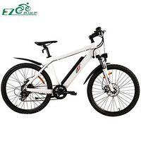 Electric Bike TDE03