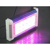 YOUTHS  150W LED Grow Light